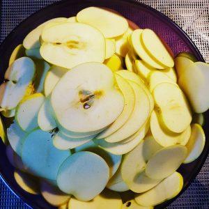 [Le Jardin de Guillaume] Pommes tranchées