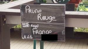 Achat prunes Le Jardin de Guillaume 02