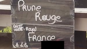 Achat prunes Le Jardin de Guillaume 03