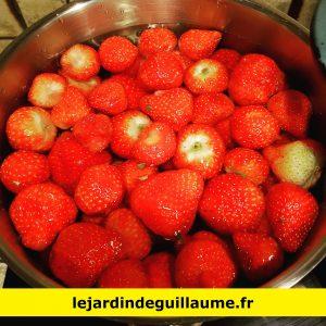 Fraises séchées artisanales avant eau bouillante - lejardindeguillaume.fr